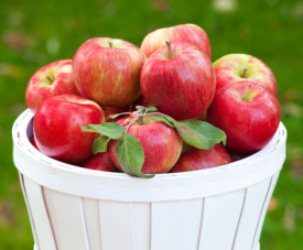 An Apple A Day | Apple Health Benefits